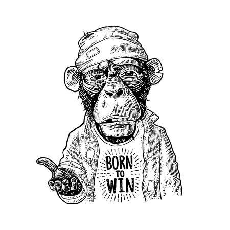 Monkeys begging. Lettering BORN to WIN. Vintage black engraving