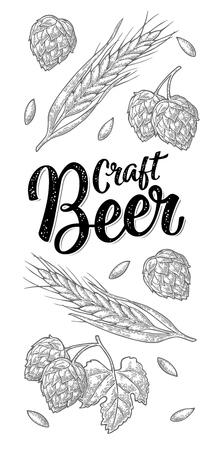 Ears of barley, leaves and cones of hops engraving. Craft Beer lettering.