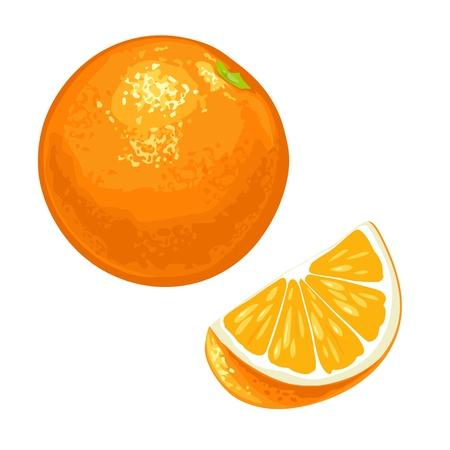 Whole and slice orange. Vector color flat vintage Illustration