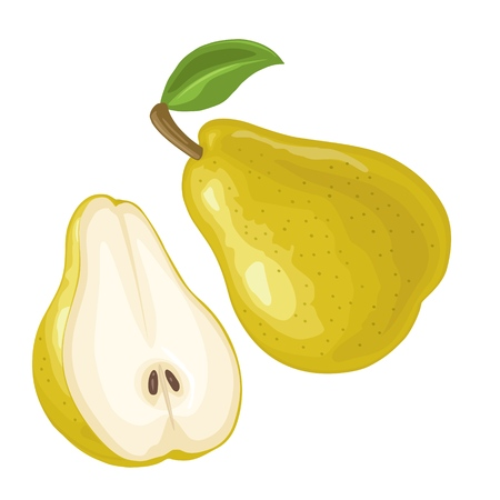 Pear whole and half with leaf. Vector color flat illustration