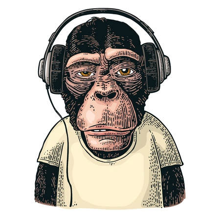 Monkey dressed t-shirt hear headphones. Vintage color engraving illustration for poster. Isolated on white background
