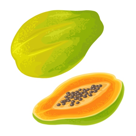 Whole and half papaya. Vector color flat illustration for menu, poster. Isolated on white background. Hand drawn design element for label, web and poster