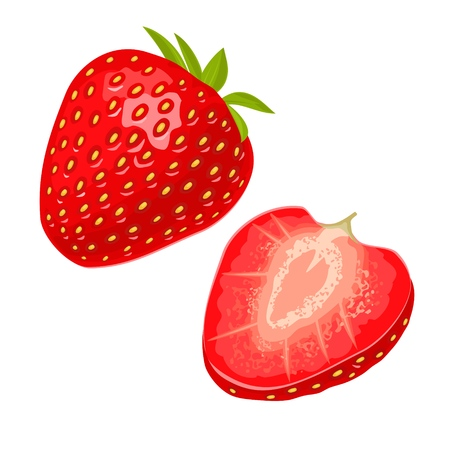 Whole and slice strawberry. Vector color flat illustration for menu, poster. Isolated on white background Ilustrace
