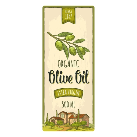 Template olive label. Branch with leaves. Rural landscape with villa or farm with field, tree and cypress. Vector vintage color engraving on beige background Фото со стока - 112321482