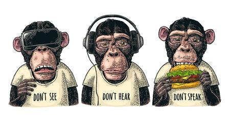 Drei weise Affen in Kopfhörern, Virtual-Reality-Headset und Burger. Nicht sehen, nicht hören, nicht sprechen. Vintage Farbstichillustration für Poster. Isoliert auf weißem Hintergrund Vektorgrafik