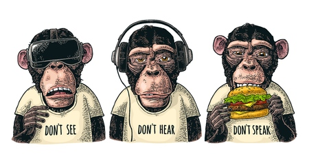 Drie wijze apen in hoofdtelefoons, virtual reality-headset en hamburger. Niet zien, niet horen, niet spreken. Vintage kleur gravure illustratie voor poster. Geïsoleerd op witte achtergrond Vector Illustratie