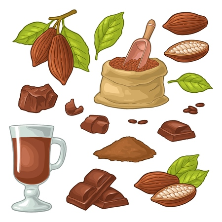 Chocolate piece, bar, shave. Fruits of cocoa with leaves and beans. Vector vintage color illustration. Isolated on white background. Hand drawn design element for label and poster
