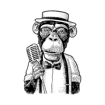 Monkey dressed hat, shirt, bow tie holding microphone. Vintage black engraving illustration. Isolated on white background. Hand drawn design element for poster