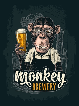 Monkey dressed in apron holding beer glass. Brewery handwriting lettering. Vintage color engraving illustration for poster and t-shirt. Isolated on white background