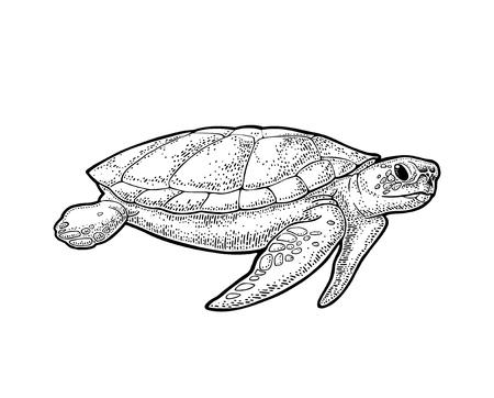 Éléphants et tortues tenant la terre plate. Gravure illustration noire vintage.