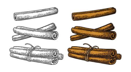 Ensemble de bâton de cannelle. Simple et bouquet attaché par une corde. Isolé sur fond blanc. Couleur de vecteur et illustration de gravure vintage monochrome. Élément de design dessiné à la main pour étiquette et affiche Vecteurs