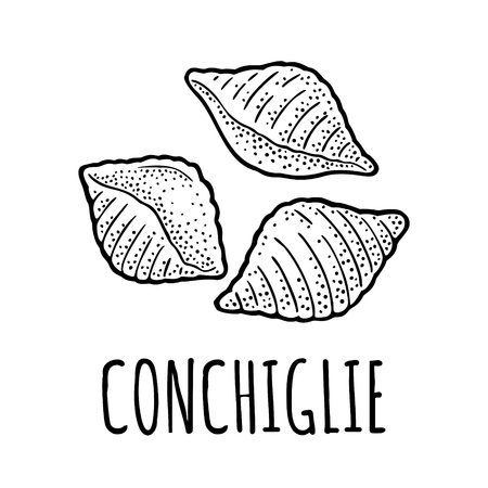 Pasta conchiglie. Vector vintage engraving black illustration isolated on white background. Hand drawn design element