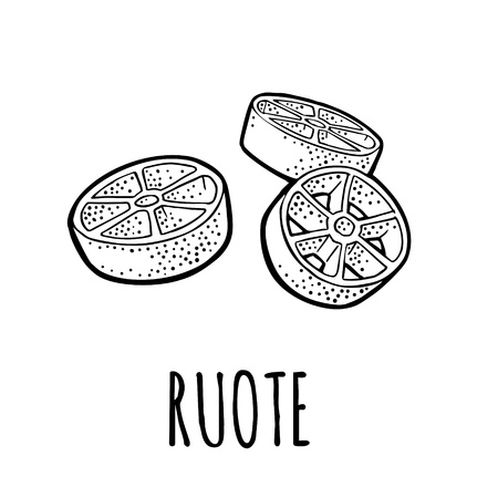 Ruote. Vector vintage engraving black illustration isolated on white background. Hand drawn design element 向量圖像