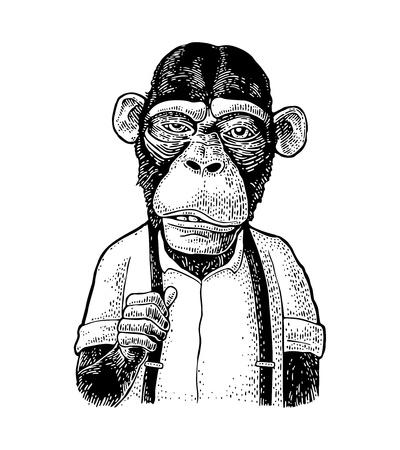 Homme d'affaires de singe vêtu de la chemise et de la jarretelle. Illustration de gravure noire vintage pour affiche. Isolé sur fond blanc Vecteurs