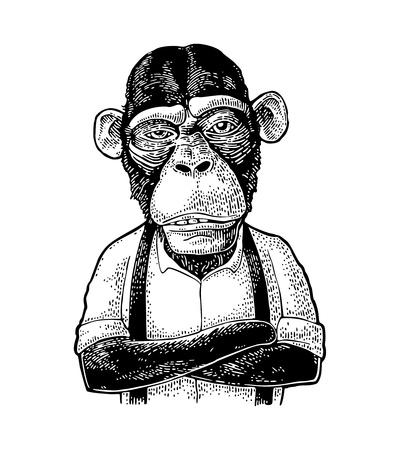 Affengeschäftsmann mit gekreuzten Pfoten im Hemd und im Hosenträger gekleidet. Vintage schwarze Gravurillustration für Plakat. Auf weißem Hintergrund isoliert