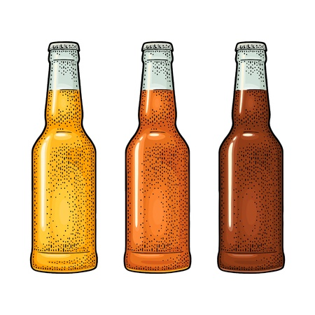 Close bottle with three types beer. Vintage color vector engraving illustration.
