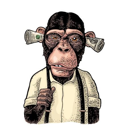 Affen mit Geld auf den Ohren. Vintage-Farbstichillustration für Poster, Web, T-Shirt, Tätowierung. Isoliert auf weißem Hintergrund