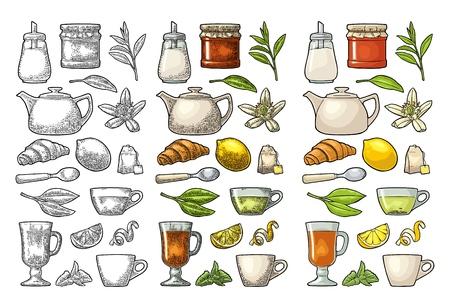 Tee einstellen. Tasse, Zweig, Blatt, Wasserkocher, Blume, Zitrone, Croissant, Beutel, Zuckerstreuer. Vektorfarbweingravur und flache Illustration für Etikettenplakatnetz. Auf weißem Hintergrund isoliert