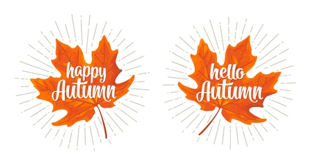 Maple leaf. Hello Happy Autumn calligraphic handwriting lettering. Vector color vintage flat illustration. Isolated on white background