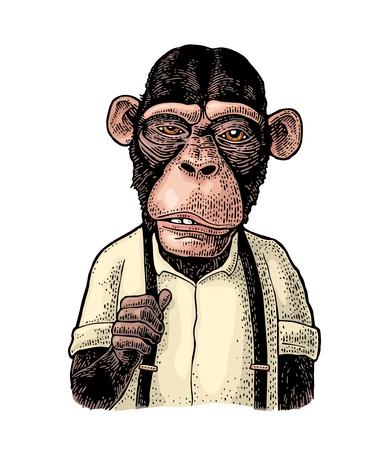 Mono empresario vestido con camisa y tirantes. Ilustración de grabado en color de la vendimia para el cartel. Aislado sobre fondo blanco