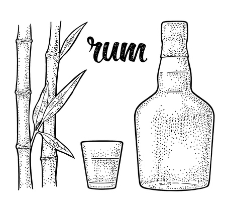 Glass and bottle of rum with sugar cane. Vintage vector black engraving illustration. Isolated on white background. Hand drawn design element for label, poster, web, invitation to party Illustration