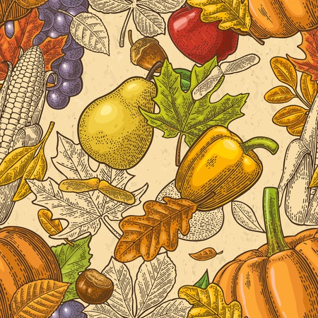 Seamless pattern for Thanksgiving Day with pumpkin, tomato, corn, pepper, leaf maple, seed chestnut, grapes, apple, pear. Vintage color vector hand drawn engraving illustration.