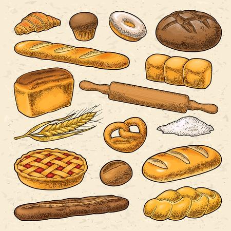 Set bread. Vector color vintage engraving illustration