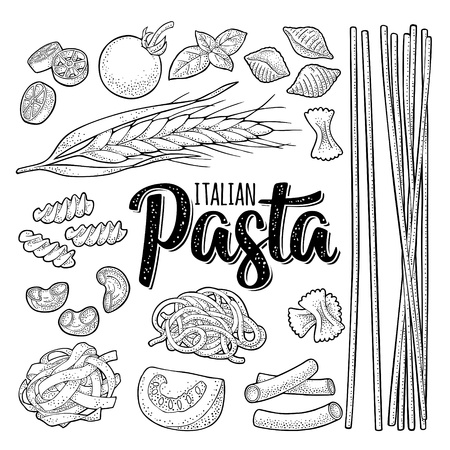 1,544 Pasta Types Stock Vector Illustration And Royalty Free
