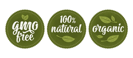 Gmo free lettering with leaf. Vector vintage sign natural organic food