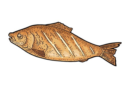 BBQ grilled whole fish top view. Vintage color vector engraving illustration. Isolated on white background. Hand drawn design element