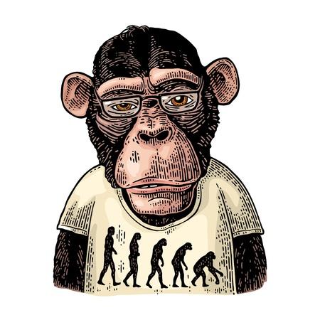 Monos vestidos con una camiseta con la teoría de la evolución al contrario.