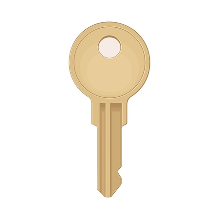 Classic key icon. Color vector flat illustration for info graphic, poster, web. Isolated on white background. Illusztráció