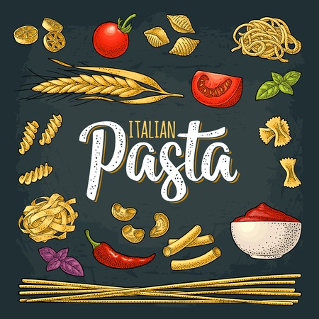Different types macaroni and ITALIAN PASTA handwriting lettering. Farfalle, conchiglie, maccheroni, fusilli, penne, pipe, spaghetti, ruote, fettuccine tomato, wheat. Vector vintage color engraving