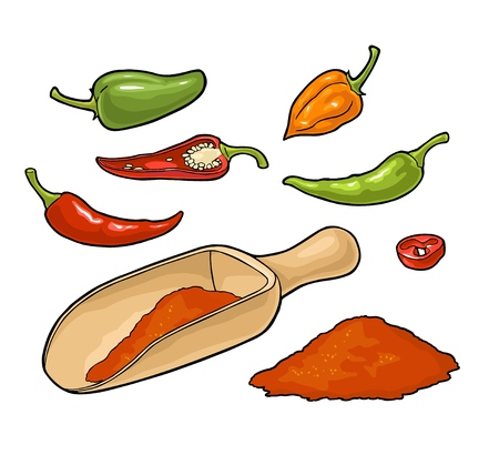 Chilli whole, half, slice and crushed pieces in wood scoop. Vector vintage color illustration. Isolated on white background. Hand drawn design element for menu, poster, label