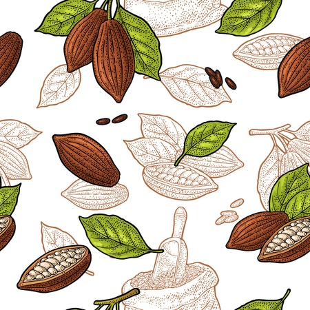 Seamless pattern with leaves and fruits of cocoa beans. Vintage color and monochrome vector hand drawn engraving illustration. Isolated on white background.