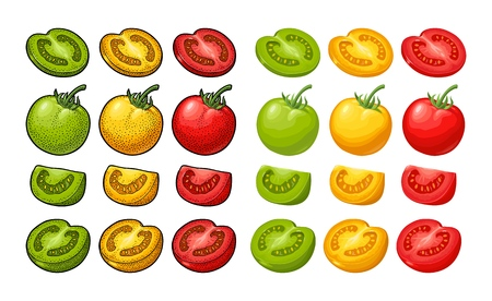 Set of hand drawn tomatoes isolated on white background. Branch, whole, half and slice. Engraving vintage and flat vector color illustration. Hand drawn design element for label and poster Ilustración de vector