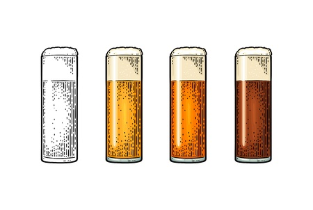 Glass with different types beer - lager, ale. Vintage color engraving