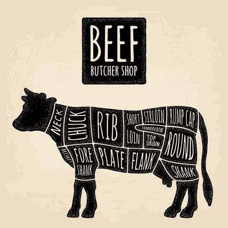 Cuts of cow meat. Beef handwriting lettering. Vintage vector engraving Illustration