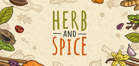 Poster with pepper, cinnamon, mint, cloves, cocoa, poppy, chilli, vanilla, bay leaf, anise, garlic ,cardamom, ginger. HERB and SPICE lettering. Vector color vintage engraving on beige spotted texture