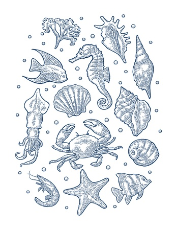 Set sea animal. Vector monochrome engraving vintage illustrations isolated on white Illustration