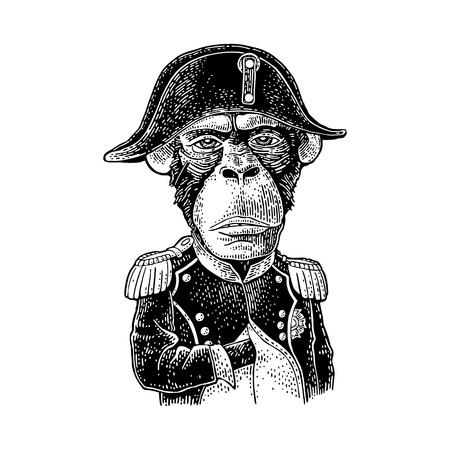 Scimmia nella posa di Napoleone vestita con l'uniforme e il berretto militari francesi. Illustrazione di incisione nera vintage. Isolato su sfondo bianco. Elemento di design disegnato a mano per poster, t-shirt Vettoriali