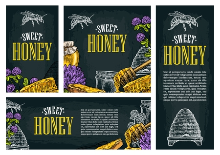 Set horizontal, vertical and square and posters with honey, honeycomb, jar, spoon, bee. Isolated on the dark background. Vector color hand drawn vintage engraving illustration for label, flyers, menu