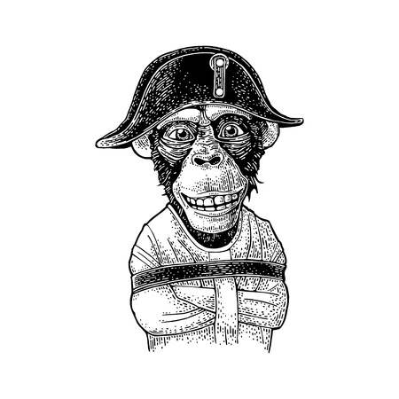 Monkey dressed in the french military uniform and cap. Vintage black engraving
