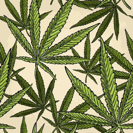 Seamless pattern with marijuana leaf. Vintage black vector engraving illustration Stock Illustratie
