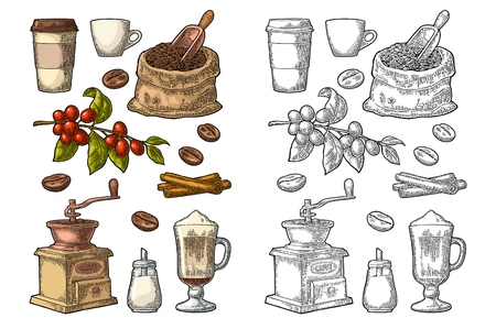 Glass latte, sack, beans, wooden scoop, hand-held coffee grinder, sugar, scoop, cinnamon stick, branch with leaf and berry. Vintage color vector engraving illustration isolated on white background Vettoriali