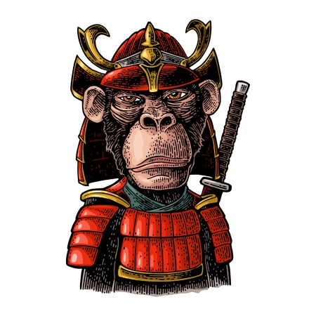 Monkey dressed in the japan helmet and armor with samurai sword behind. Vintage color engraving illustration. Isolated on white background. Hand drawn design element for poster, t-shirt