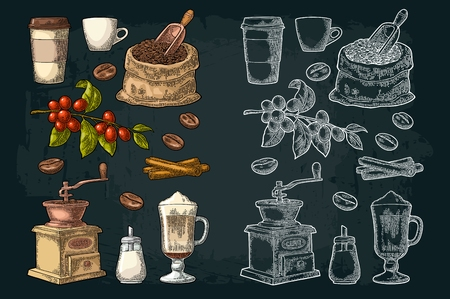 Glass latte, sack, beans, wooden scoop, hand-held coffee grinder, sugar, scoop, cinnamon stick, branch with leaf and berry. Vintage color vector engraving illustration isolated on dark background