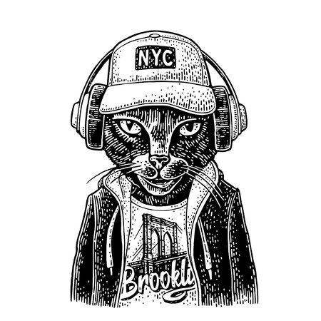 Cat to headphones dressed in the hoodie, baseball cap, t-shirt with the Brooklyn Bridge. Vintage black engraving illustration. Isolated on white background. Hand drawn design element for poster Stock Illustratie