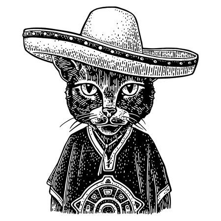 Cat dressed in the poncho, sombrero. Vintage black engraving illustration. Isolated on white background. Hand drawn design element for poster Illustration