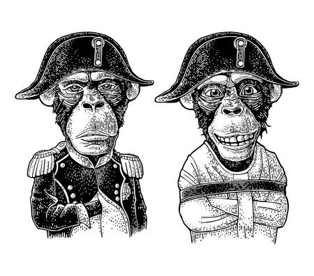 Affen in der Zwangsjacke und in der französischen Militäruniform und Napoleonmütze. Vintage schwarze Gravurillustration. Isoliert auf weißem Hintergrund. Handgezeichnetes Gestaltungselement für T-Shirt
